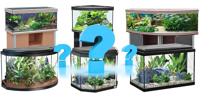 Какой лучше выбрать аквариум?