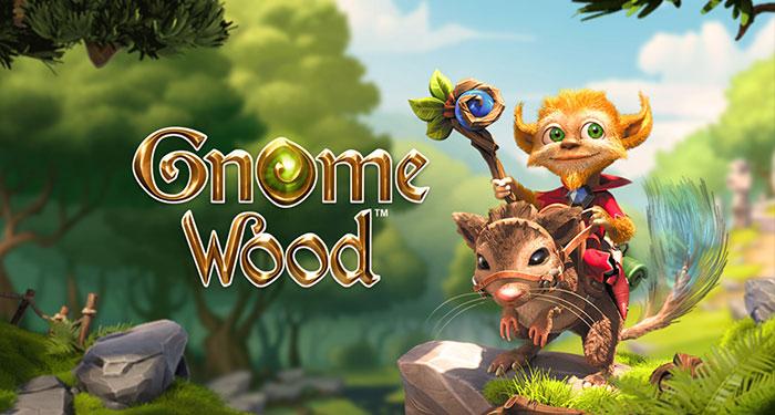 Описание игрового автомата Gnome Wood от клуба Джой